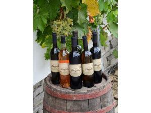etikety na vína, Komjathi, víno Komjatice