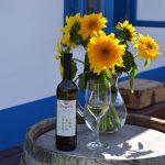 komjathi - degustácia vína devín 2015